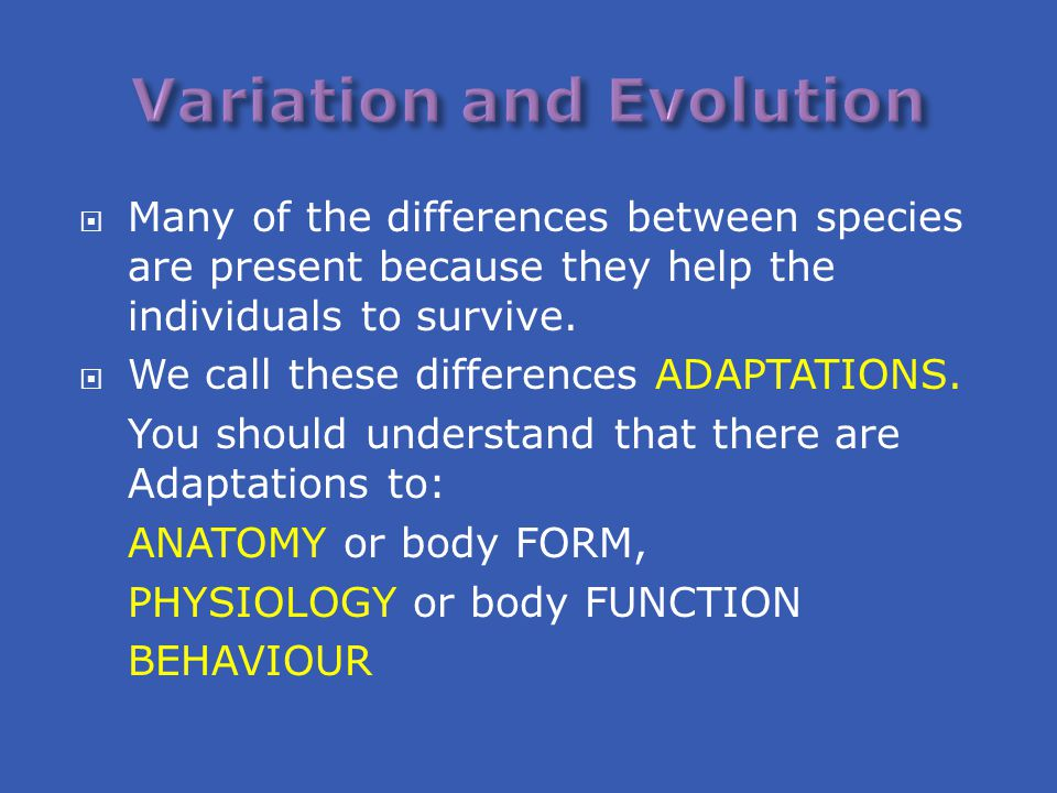  Many of the differences between species are present because they help the individuals to survive.  We call these differences ADAPTATIONS. You shoul
