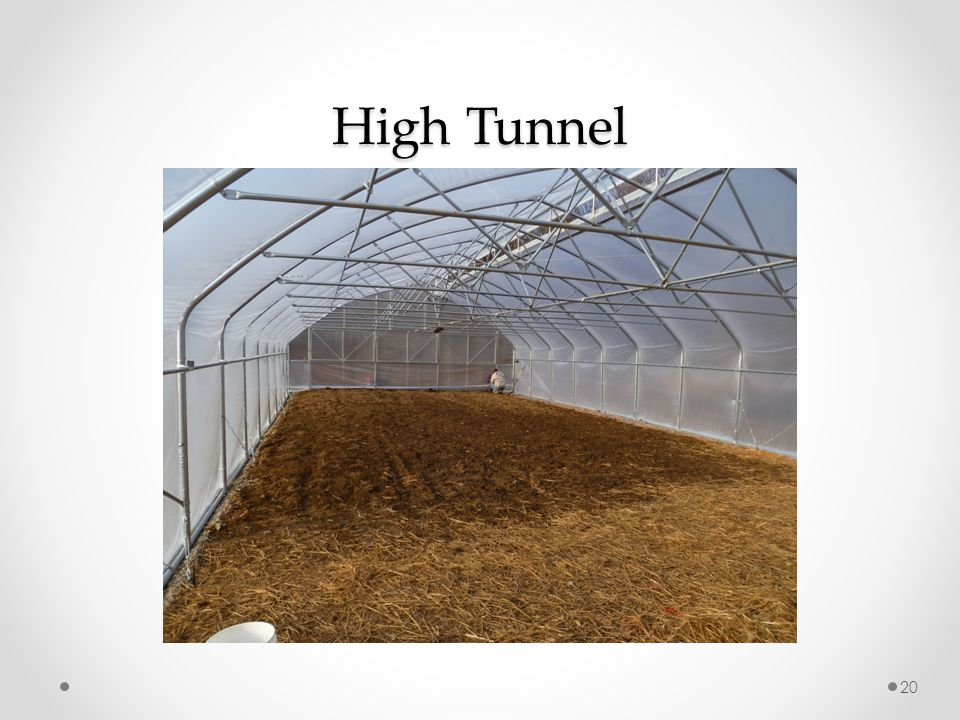 High Tunnel 20