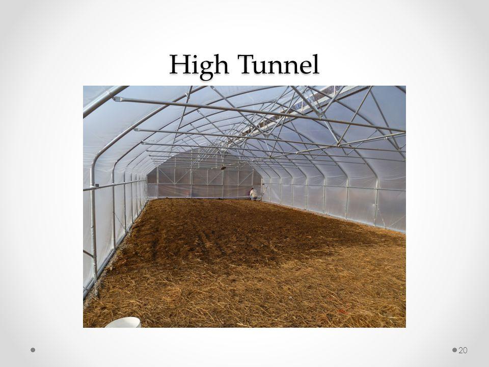 High Tunnel 20