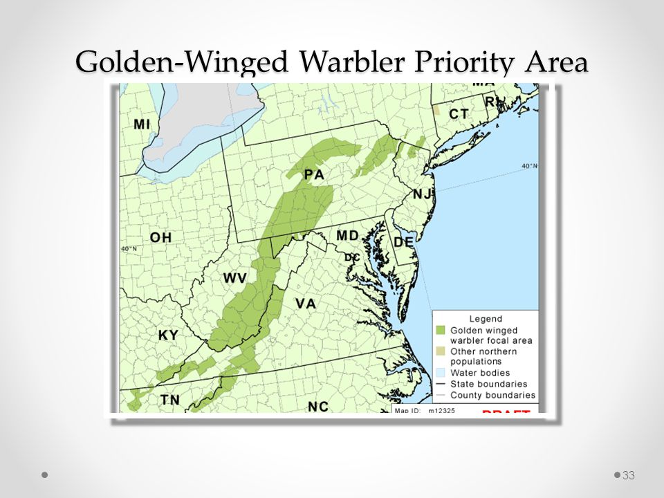Golden-Winged Warbler Priority Area 33
