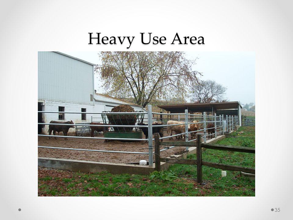 Heavy Use Area 35