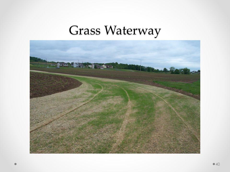 Grass Waterway 40