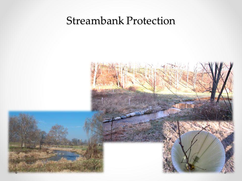 Streambank Protection