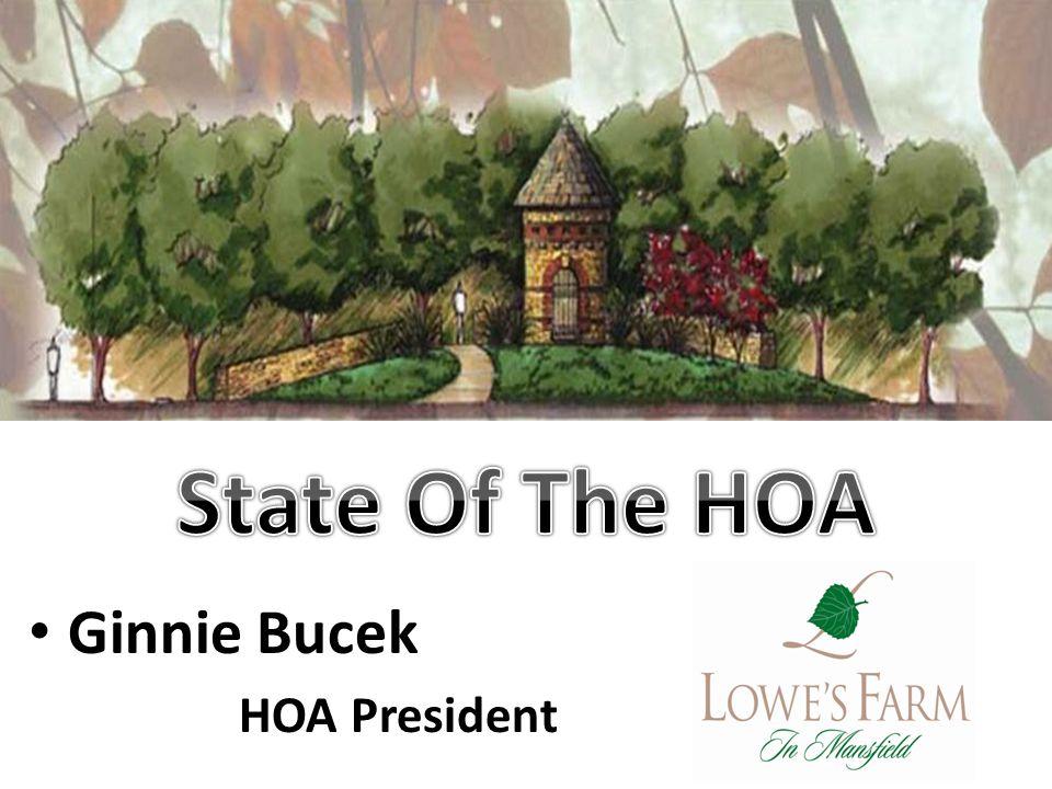 Ginnie Bucek HOA President