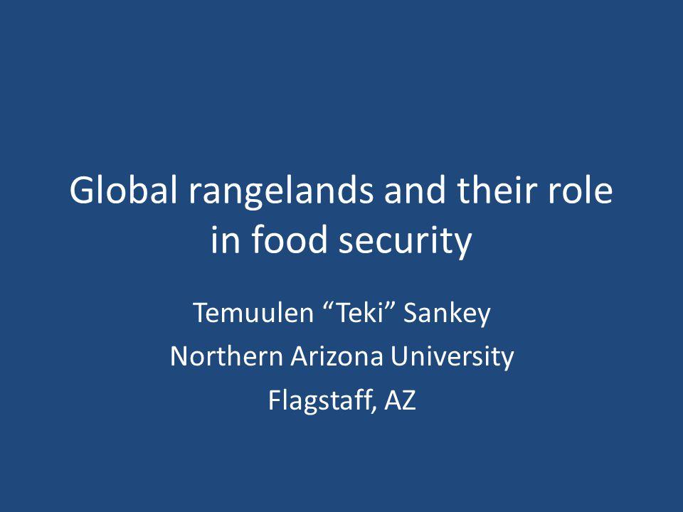 Global rangelands and their role in food security Temuulen Teki Sankey Northern Arizona University Flagstaff, AZ