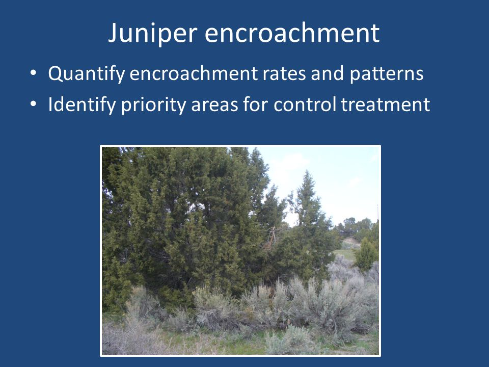 Juniper encroachment Quantify encroachment rates and patterns Identify priority areas for control treatment