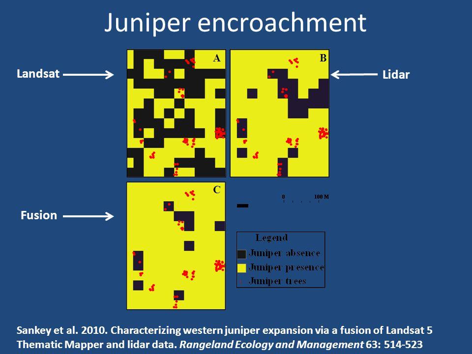 Juniper encroachment Sankey et al. 2010.