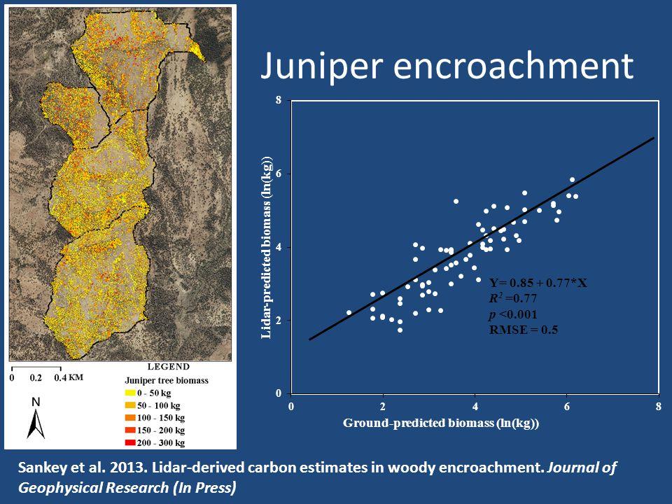 Juniper encroachment Sankey et al. 2013. Lidar-derived carbon estimates in woody encroachment.