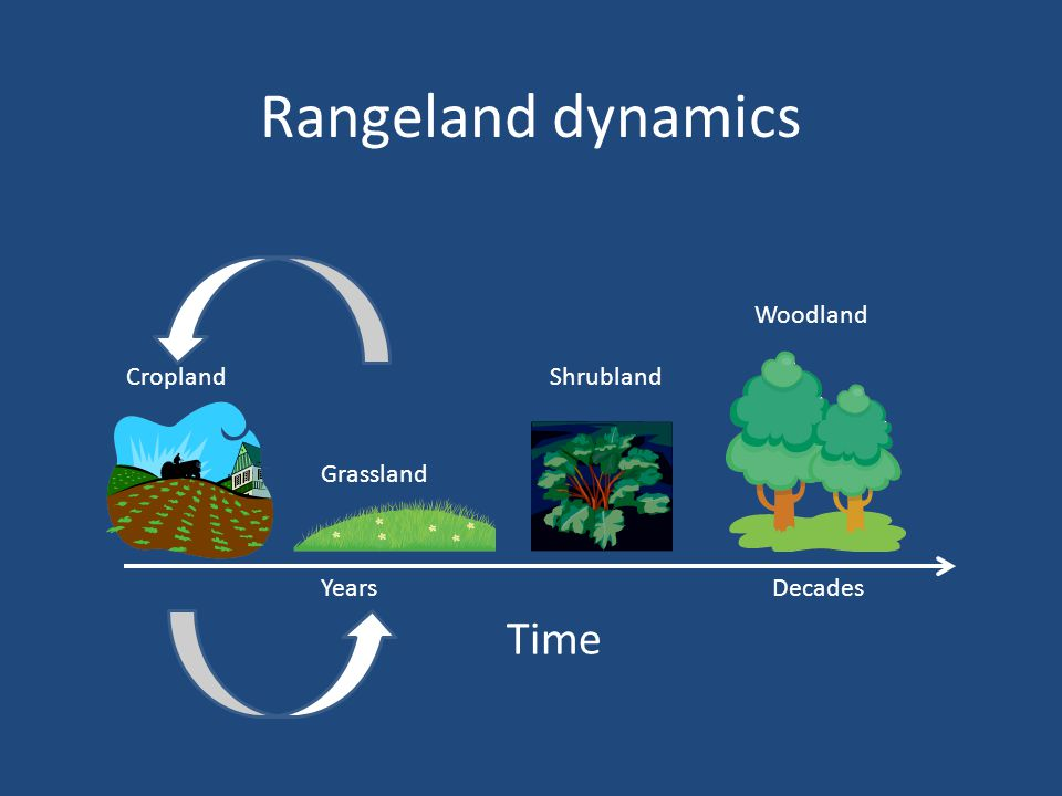 Grassland Shrubland Woodland Cropland Rangeland dynamics Time YearsDecades
