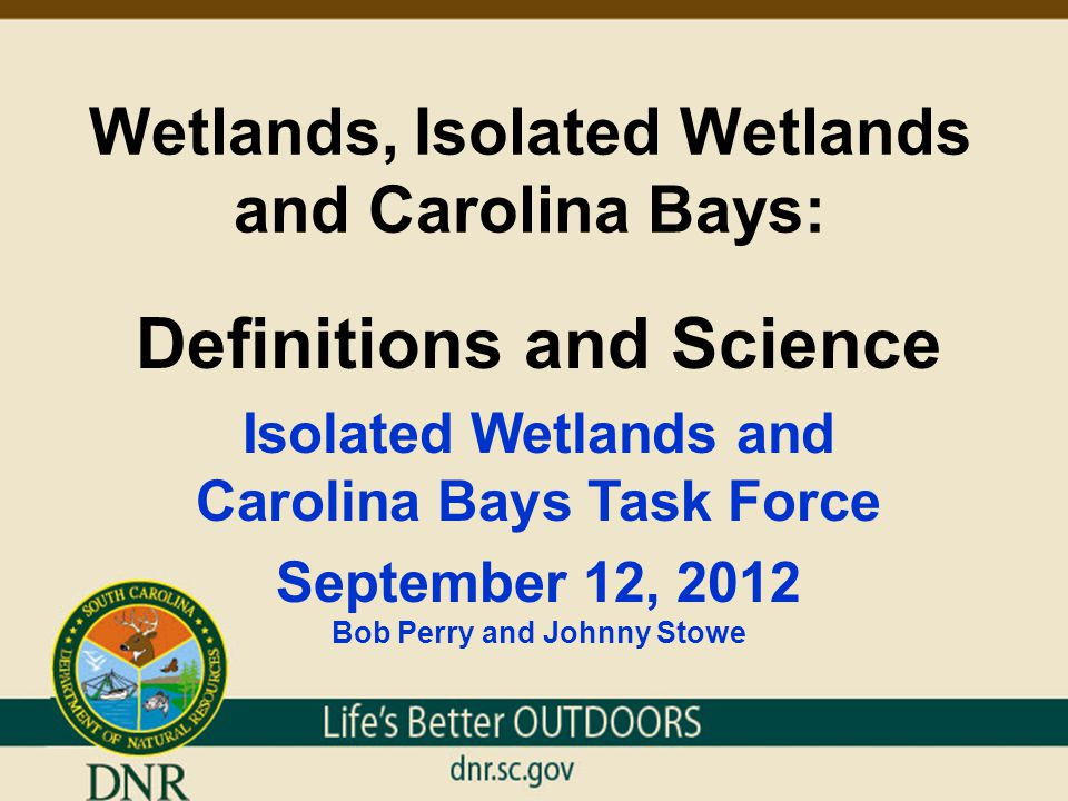 Wetlands, Isolated Wetlands and Carolina Bays: Definitions and Science Presenter Qualifications Bob Perry, Director Office of Environmental Programs, DNR  26 years field experience working in wetland management and ecology.