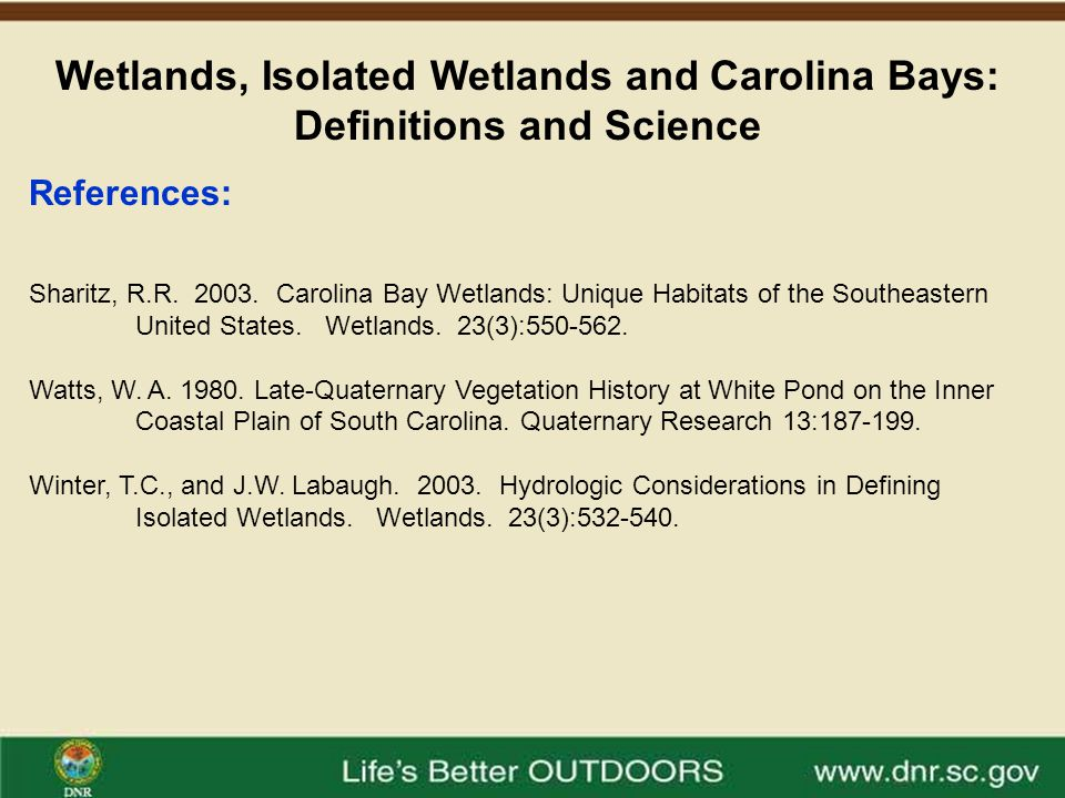 Wetlands, Isolated Wetlands and Carolina Bays: Definitions and Science Questions?