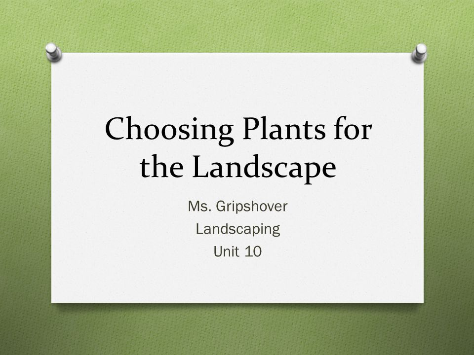 Choosing Plants for the Landscape Ms. Gripshover Landscaping Unit 10