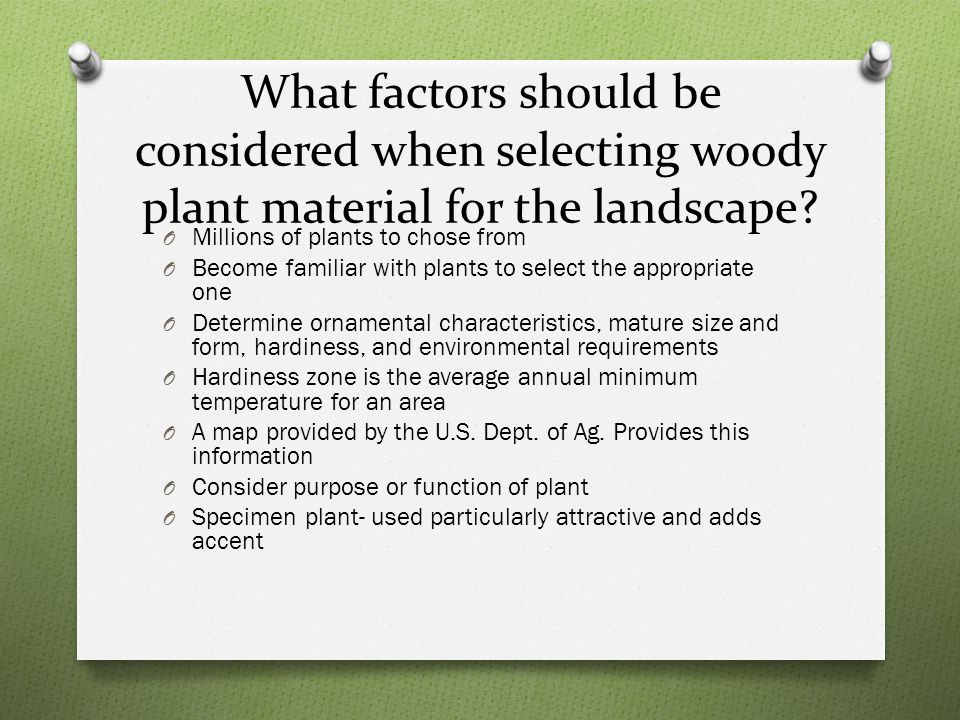 What factors should be considered when selecting woody plant material for the landscape.