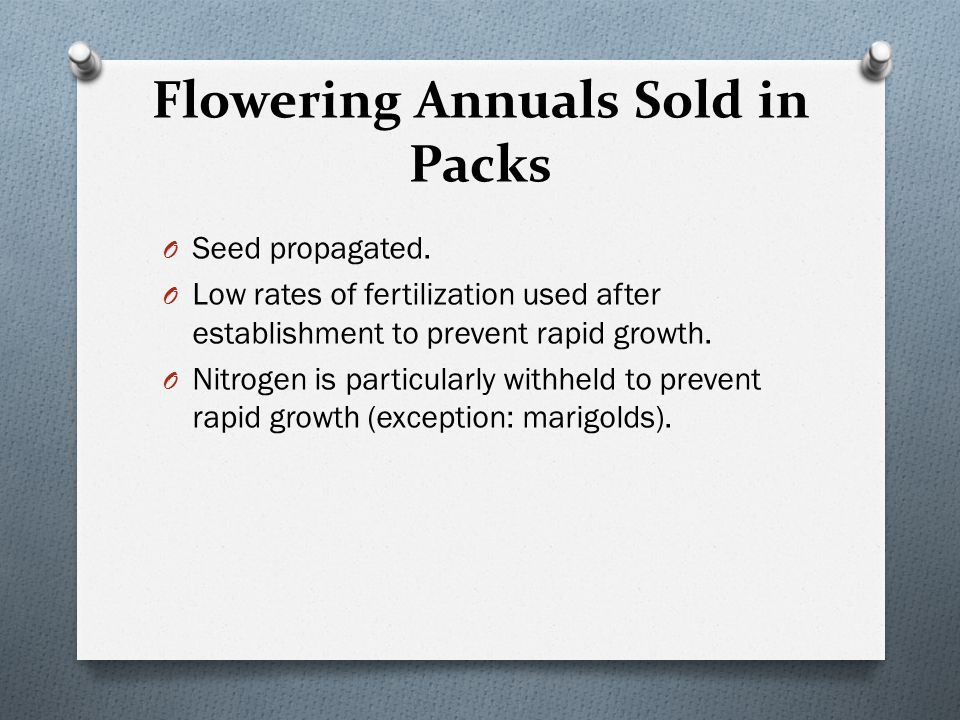 Flowering Annuals Sold in Packs O Seed propagated. O Low rates of fertilization used after establishment to prevent rapid growth. O Nitrogen is partic