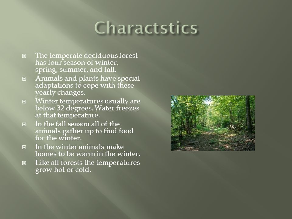  The temperate deciduous forest has four season of winter, spring, summer, and fall.  Animals and plants have special adaptations to cope with these