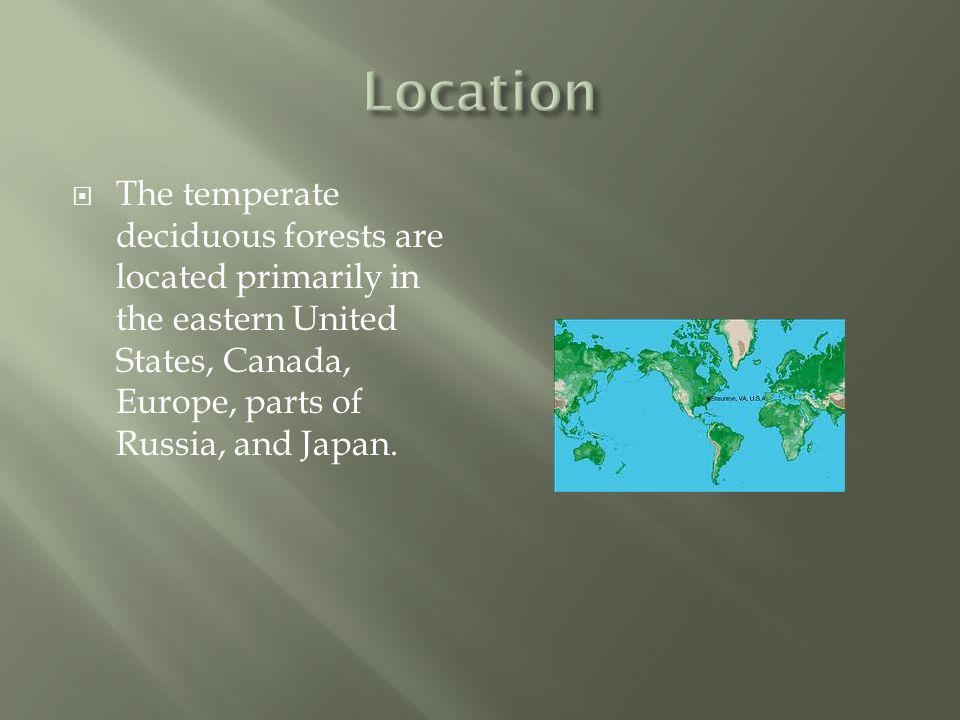  The temperate deciduous forests are located primarily in the eastern United States, Canada, Europe, parts of Russia, and Japan.