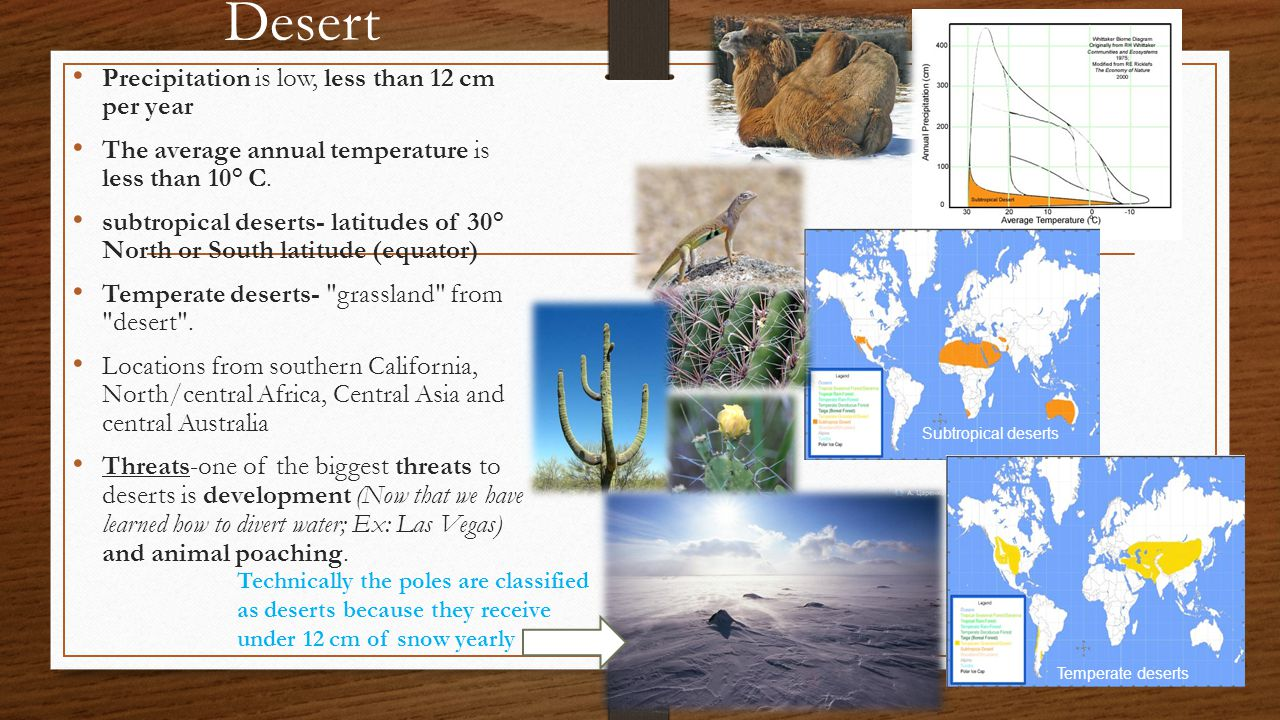 Desert Precipitation is low, less than 12 cm per year The average annual temperature is less than 10° C.