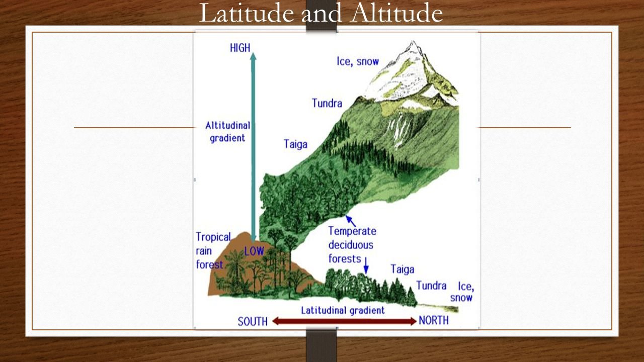 Latitude and Altitude