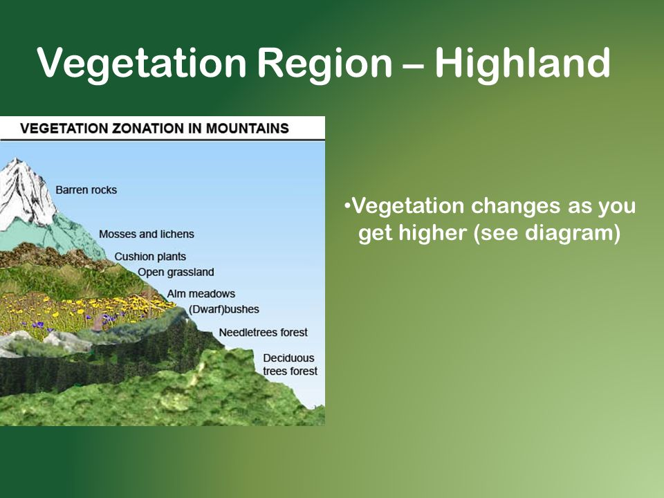Vegetation Region – Highland Vegetation changes as you get higher (see diagram)