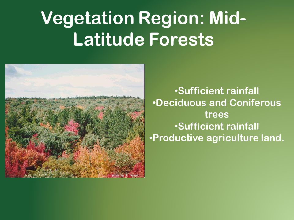 Vegetation Region: Mid- Latitude Forests Sufficient rainfall Deciduous and Coniferous trees Sufficient rainfall Productive agriculture land.