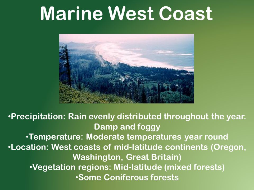 Marine West Coast Precipitation: Rain evenly distributed throughout the year. Damp and foggy Temperature: Moderate temperatures year round Location: W