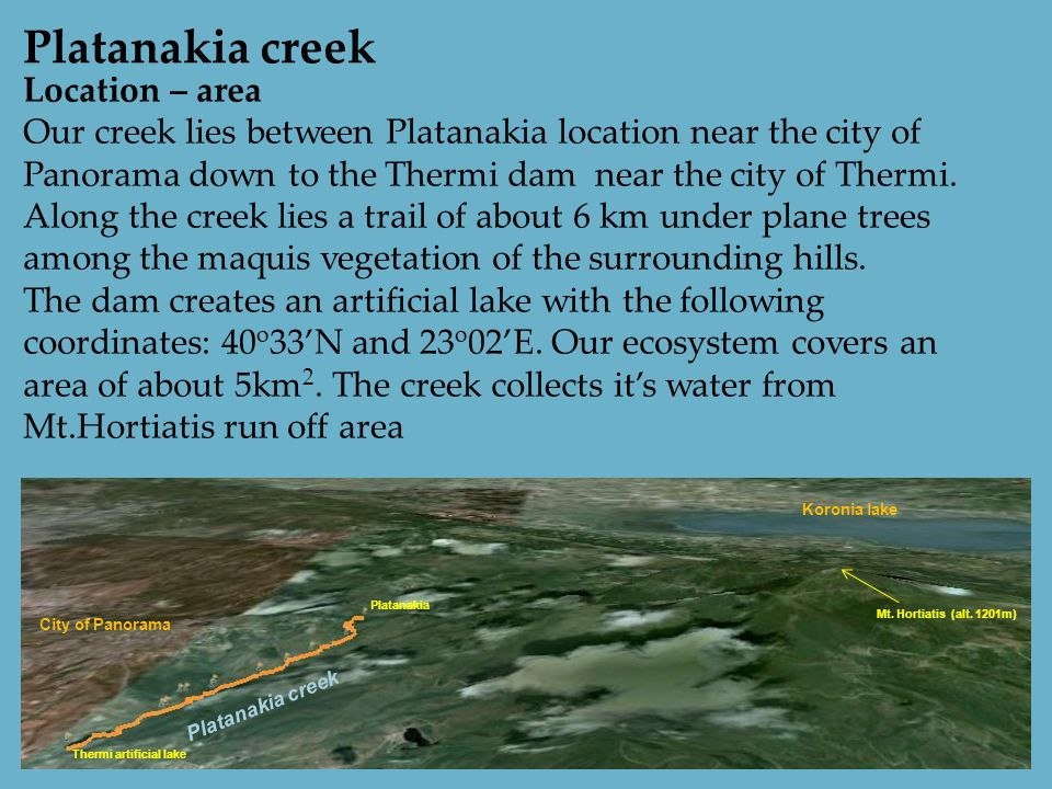 Location – area Our creek lies between Platanakia location near the city of Panorama down to the Thermi dam near the city of Thermi.