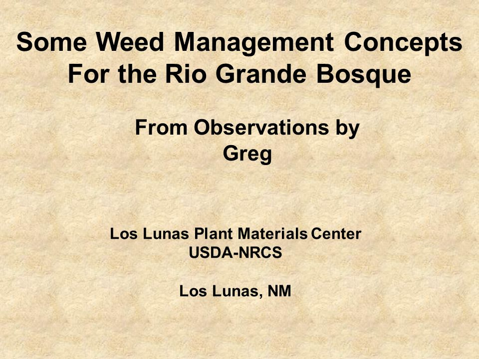 Some Weed Management Concepts For the Rio Grande Bosque Los Lunas Plant Materials Center USDA-NRCS Los Lunas, NM From Observations by Greg
