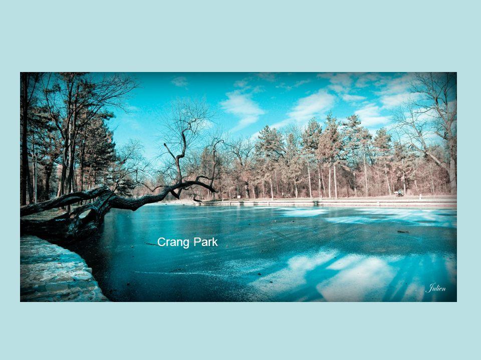 Crang Park