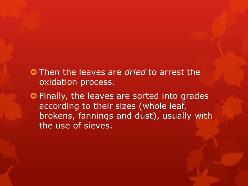  Then the leaves are dried to arrest the oxidation process.