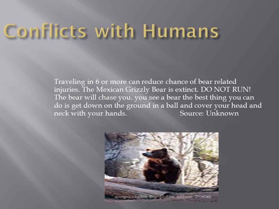 Traveling in 6 or more can reduce chance of bear related injuries.