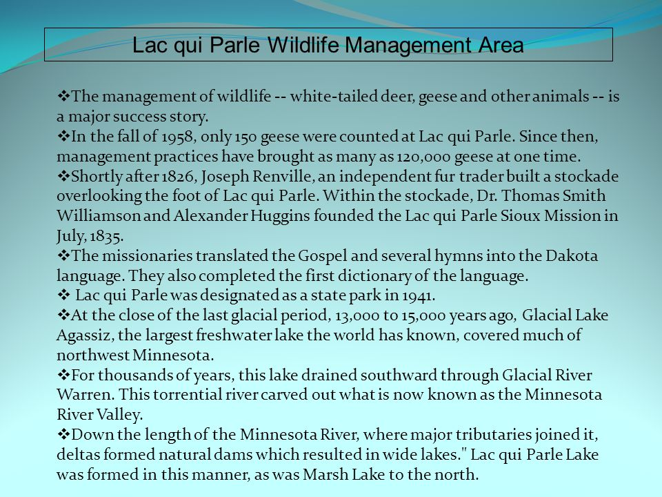 Lac qui Parle Wildlife Management Area  The management of wildlife -- white-tailed deer, geese and other animals -- is a major success story.