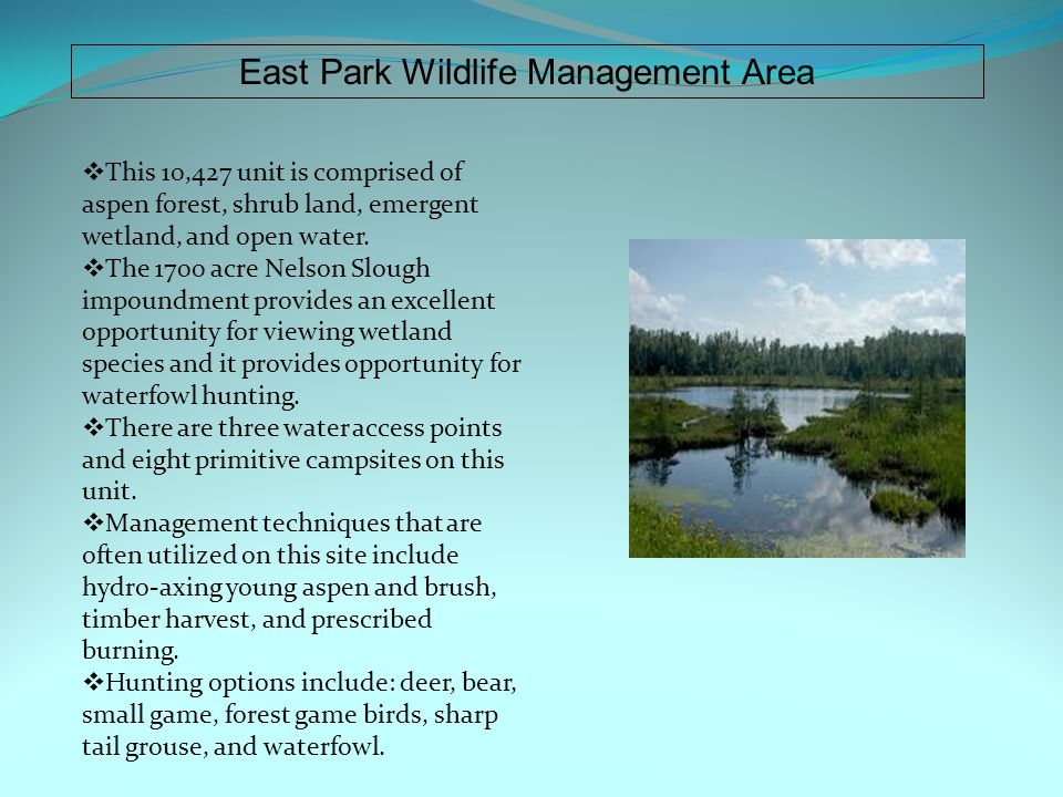 East Park Wildlife Management Area  This 10,427 unit is comprised of aspen forest, shrub land, emergent wetland, and open water.