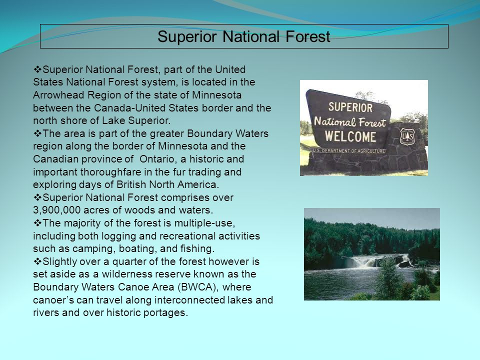 Superior National Forest  Superior National Forest, part of the United States National Forest system, is located in the Arrowhead Region of the state of Minnesota between the Canada-United States border and the north shore of Lake Superior.