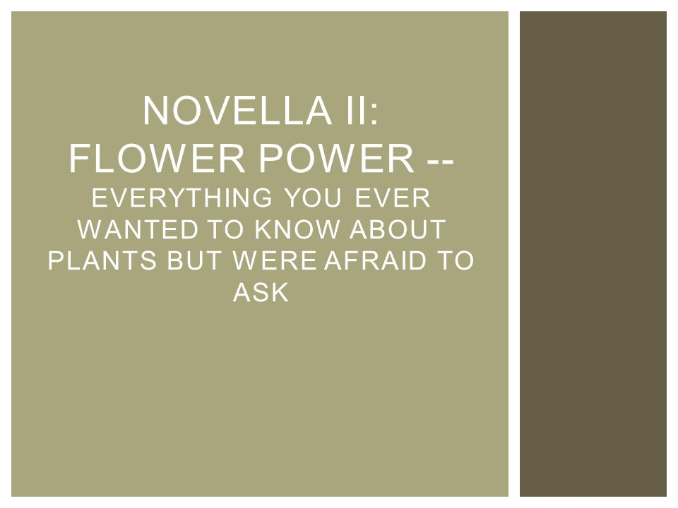 NOVELLA II: FLOWER POWER -- EVERYTHING YOU EVER WANTED TO KNOW ABOUT PLANTS BUT WERE AFRAID TO ASK