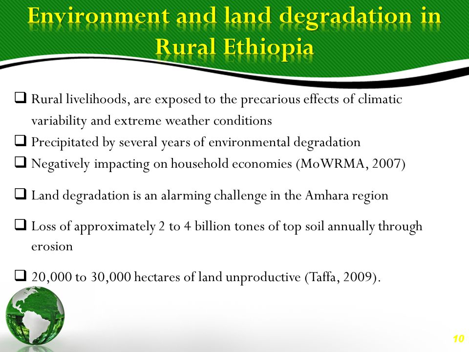 10  Rural livelihoods, are exposed to the precarious effects of climatic variability and extreme weather conditions  Precipitated by several years of environmental degradation  Negatively impacting on household economies (MoWRMA, 2007)  Land degradation is an alarming challenge in the Amhara region  Loss of approximately 2 to 4 billion tones of top soil annually through erosion  20,000 to 30,000 hectares of land unproductive (Taffa, 2009).