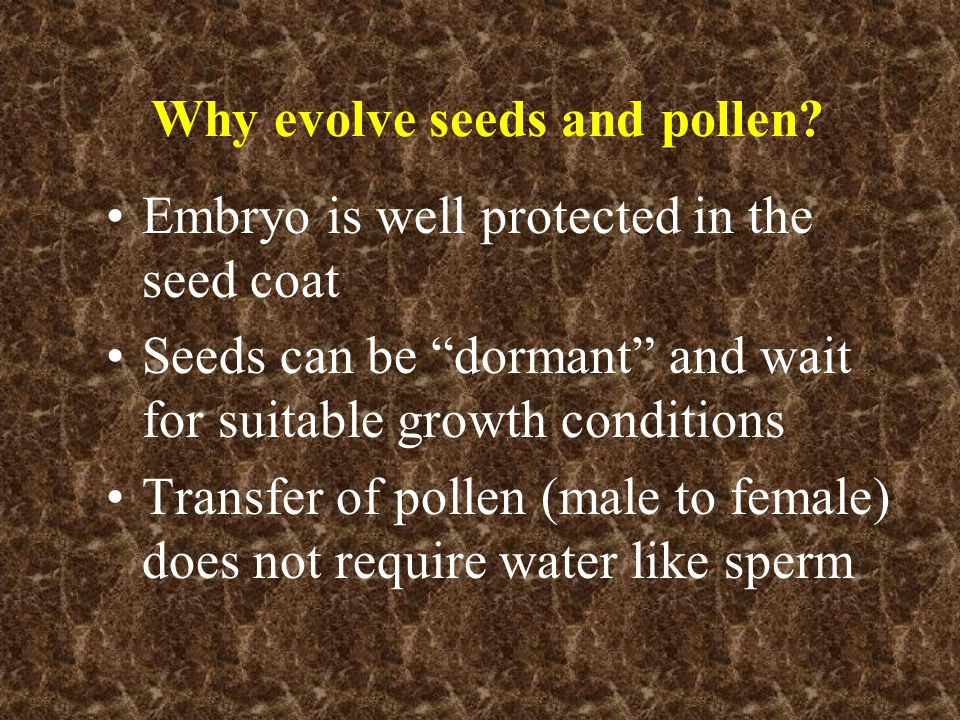Why evolve seeds and pollen.