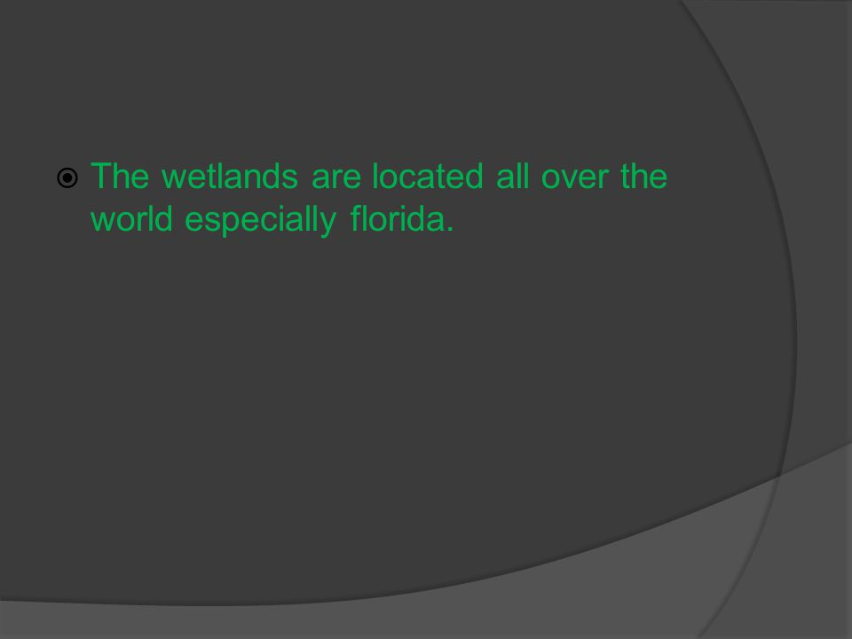  The wetlands are located all over the world especially florida.