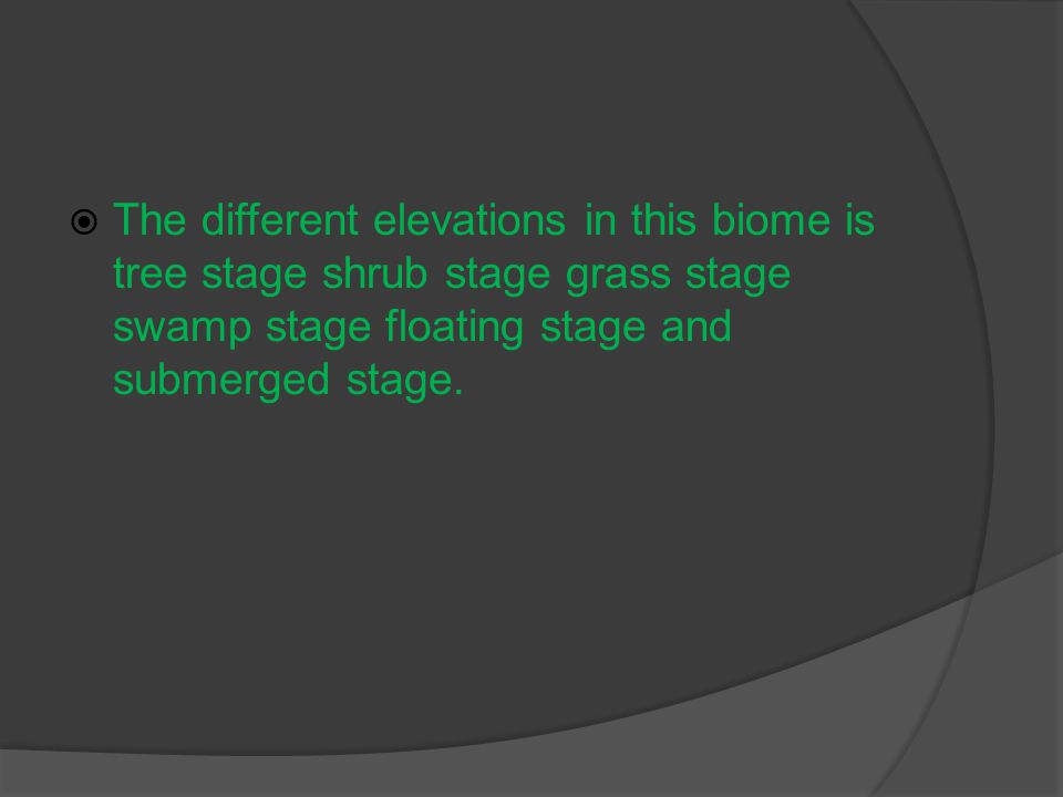  The different elevations in this biome is tree stage shrub stage grass stage swamp stage floating stage and submerged stage.