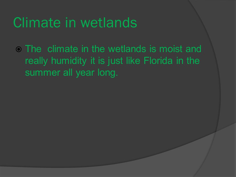 Climate in wetlands  The climate in the wetlands is moist and really humidity it is just like Florida in the summer all year long.