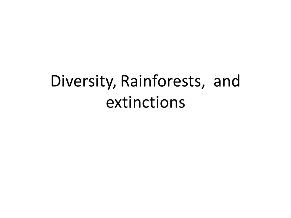 Diversity, Rainforests, and extinctions