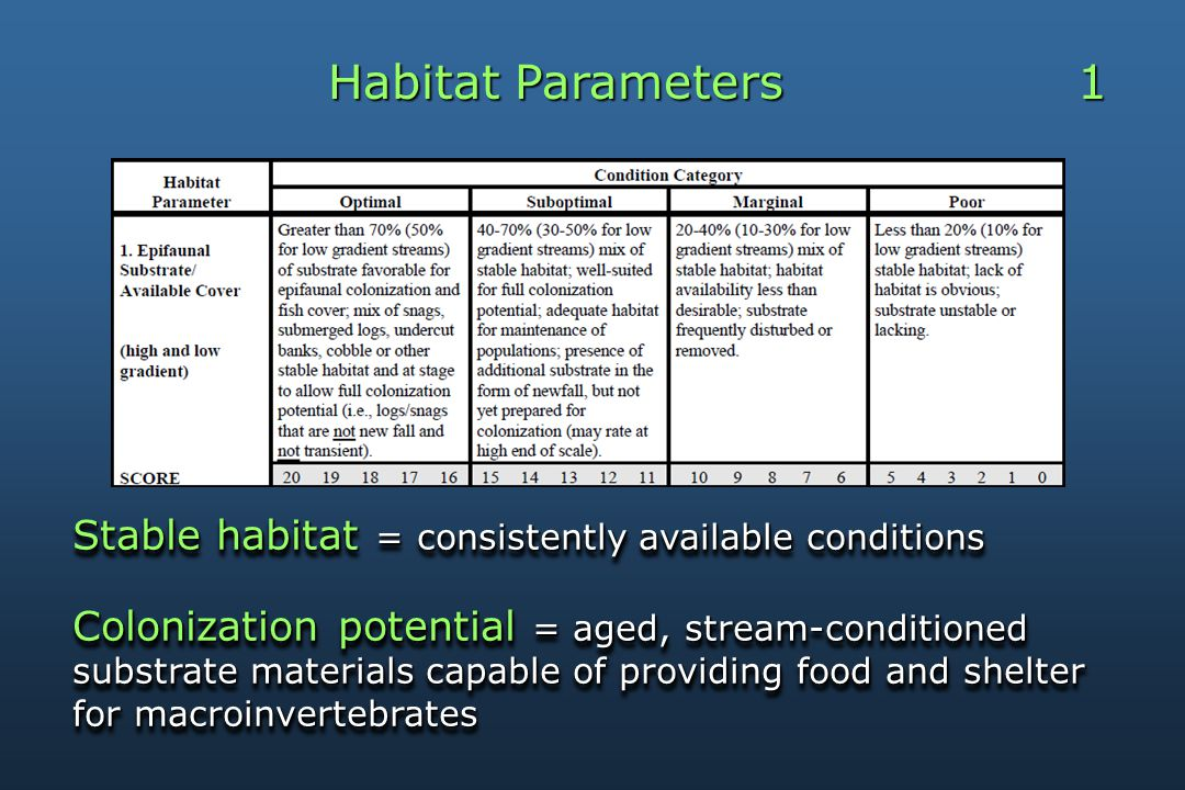 Habitat Parameters 1 Stable habitat = consistently available conditions Colonization potential = aged, stream-conditioned substrate materials capable of providing food and shelter for macroinvertebrates Stable habitat = consistently available conditions Colonization potential = aged, stream-conditioned substrate materials capable of providing food and shelter for macroinvertebrates