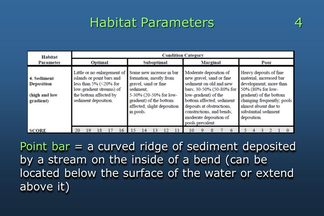 Habitat Parameters 4 Point bar = a curved ridge of sediment deposited by a stream on the inside of a bend (can be located below the surface of the water or extend above it)