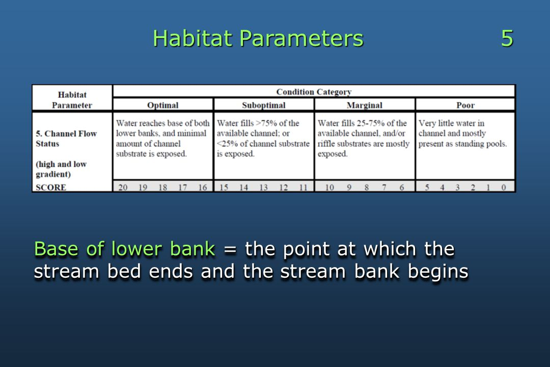 Habitat Parameters 5 Base of lower bank = the point at which the stream bed ends and the stream bank begins