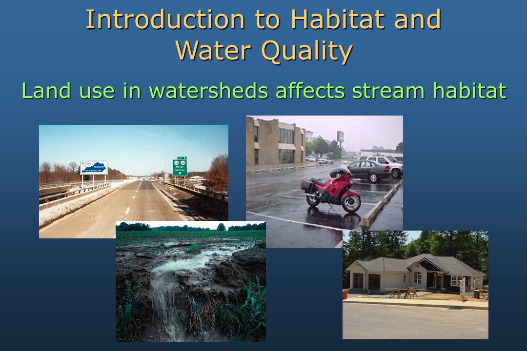 Land use in watersheds affects stream habitat Introduction to Habitat and Water Quality