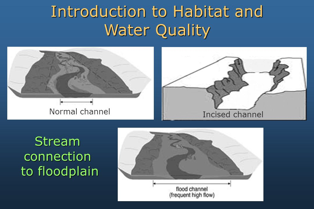 Incised channel Streamconnection to floodplain to floodplain Introduction to Habitat and Water Quality Normal channel