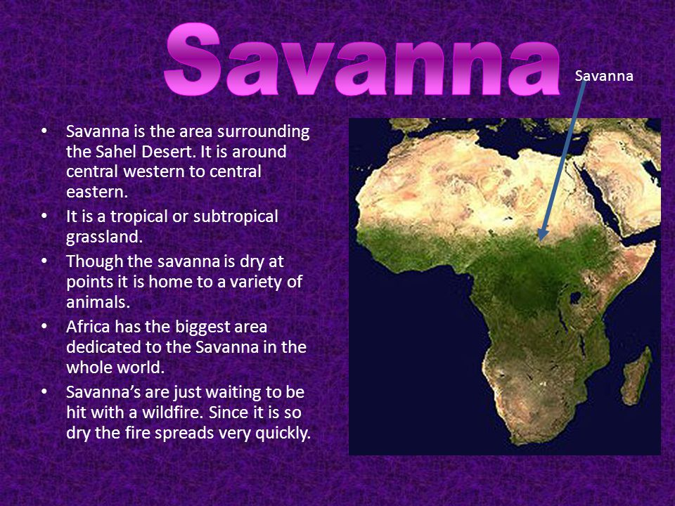 Savanna is the area surrounding the Sahel Desert. It is around central western to central eastern. It is a tropical or subtropical grassland. Though t