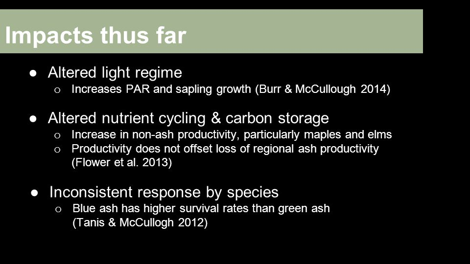 Impacts thus far ●Altered light regime o Increases PAR and sapling growth (Burr & McCullough 2014) ●Altered nutrient cycling & carbon storage o Increase in non-ash productivity, particularly maples and elms o Productivity does not offset loss of regional ash productivity (Flower et al.