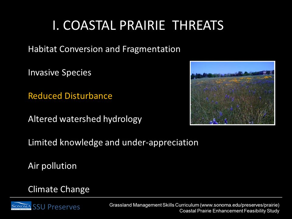 I. COASTAL PRAIRIE THREATS Habitat Conversion and Fragmentation Invasive Species Reduced Disturbance Altered watershed hydrology Limited knowledge and