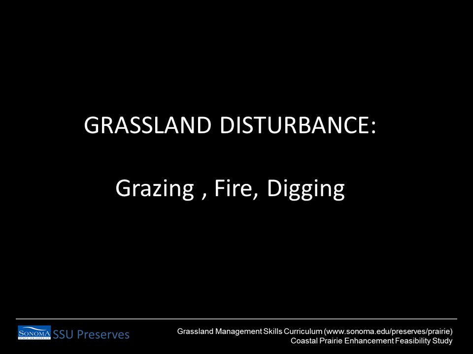 GRASSLAND DISTURBANCE: Grazing, Fire, Digging