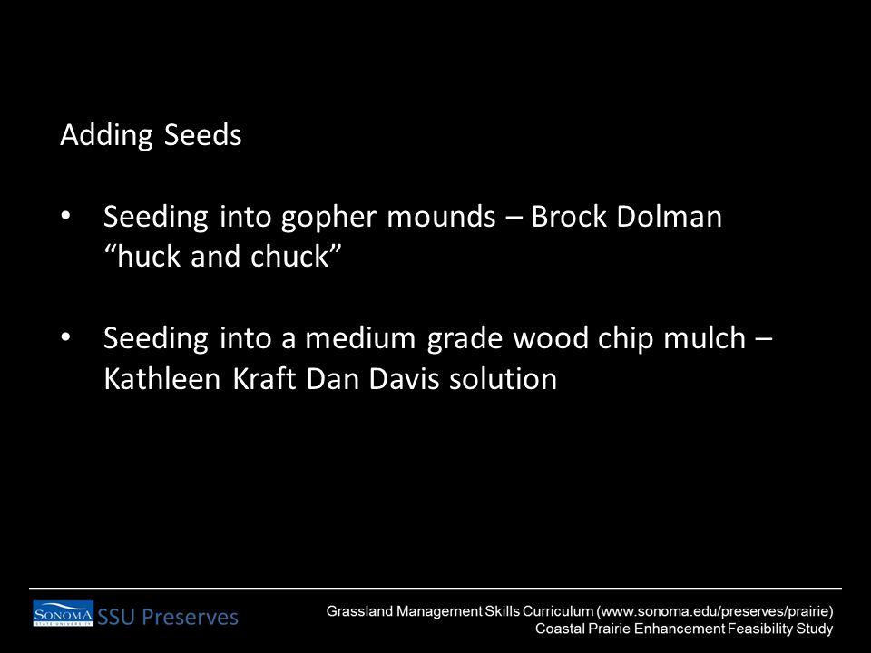 Adding Seeds Seeding into gopher mounds – Brock Dolman huck and chuck Seeding into a medium grade wood chip mulch – Kathleen Kraft Dan Davis solution